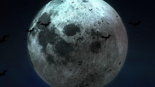 ハロウィーンの真夜中に大きな月とコウモリ [ループ] - 不吉点の映像素材/bロール