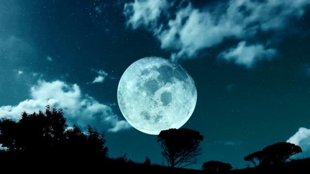夜に大きな月 ビデオ