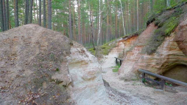 ett stort berg mitt i skogen i piusa - fur bildbanksvideor och videomaterial från bakom kulisserna
