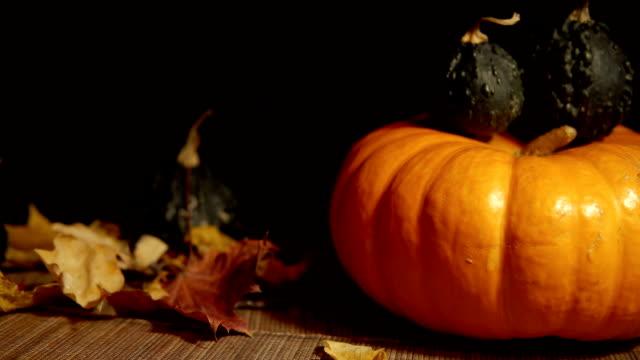 big orange pumpkin and small green gourds on a black background. - zucca legenaria video stock e b–roll