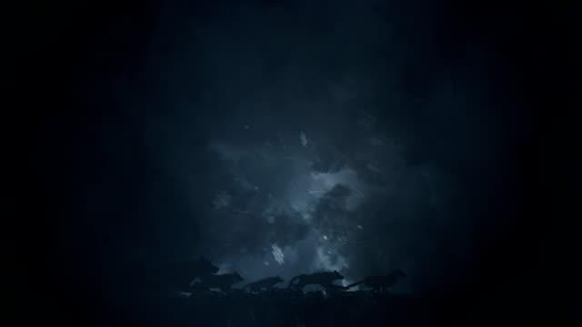 vídeos de stock e filmes b-roll de big pack of wolves running through a snow storm - coiote