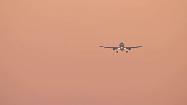 stockvideo's en b-roll-footage met grote vliegtuig landing op avondrood, vliegen vliegtuig op rode zonsopgang hemel - schiphol