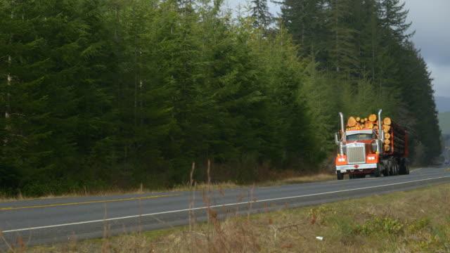 stockvideo's en b-roll-footage met big rig transports logt neer op een snelweg die het olympic national forest doorkruist - boomstam