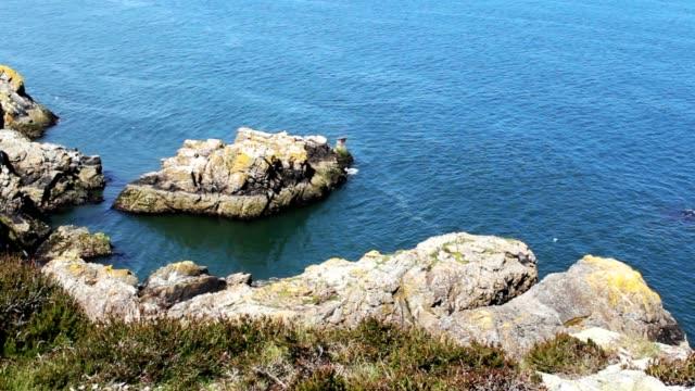 Big Rocks and Sea, Nature Scene, Wild, Wildlife video