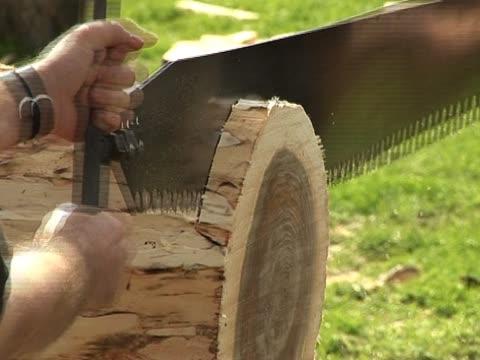 Big Saw cutting through wood 2 Men use a saw to cut through a log - Tripod agricultural occupation stock videos & royalty-free footage