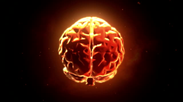 Big strong brain pulsing Big strong brain pulsing brain stock videos & royalty-free footage