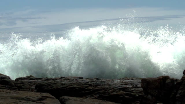 Big wave video