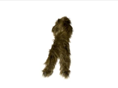 bigfoot celebra - bigfoot video stock e b–roll