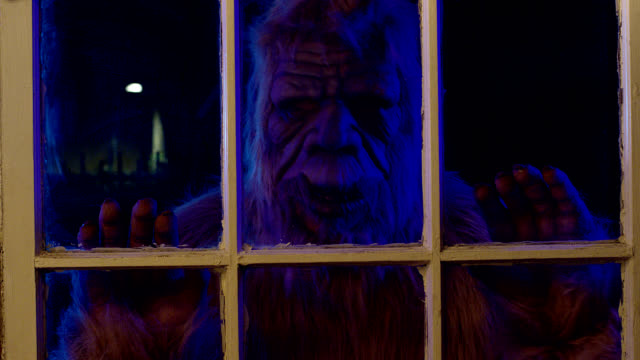 Bigfoot in the Window