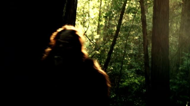 bigfoot gita attraverso la foresta di sequoie. - yeti video stock e b–roll
