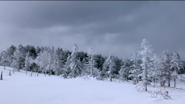 bihoro pass, hokkaido, japan. - akan nationalpark bildbanksvideor och videomaterial från bakom kulisserna