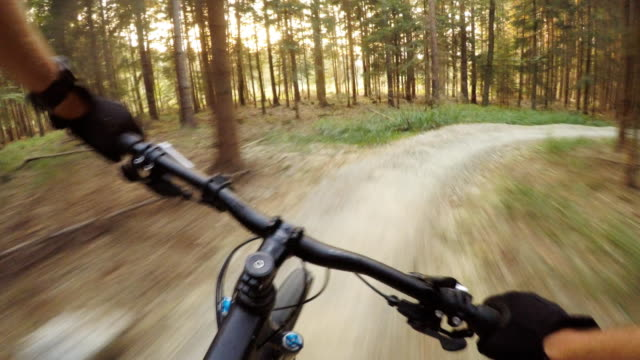 Bike riding on mountain trail, cycling in the woods video