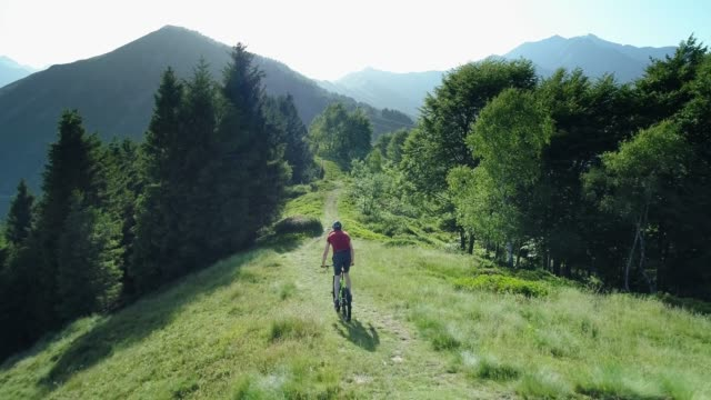 biker riding mountain bike along forest trail aerial view in summer sunny day. cross country biker. aerial mtb bike riding on track trail. riding mountain e-bike along path on the mountains - percorso per bicicletta video stock e b–roll