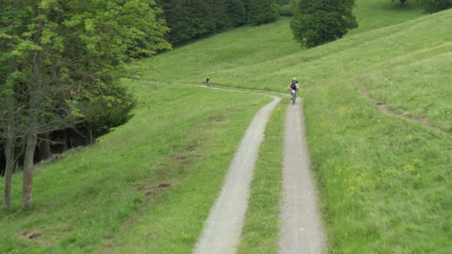 bikers race up narrow road through green pasture and forest - percorso per bicicletta video stock e b–roll