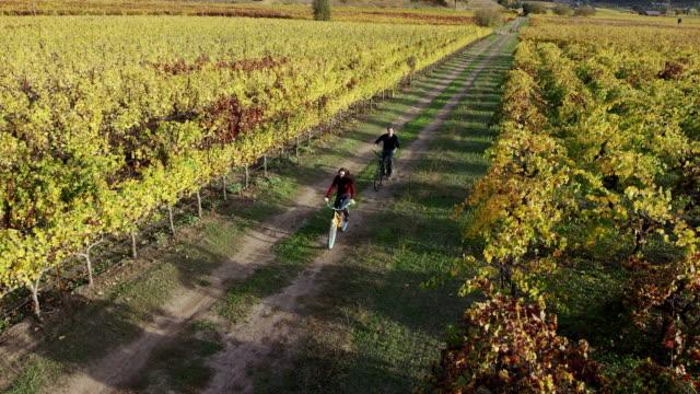 Biking in Vineyards video