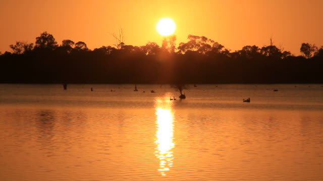 Billabong Australia video