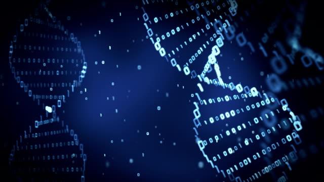 vídeos y material grabado en eventos de stock de binario adn (loop). - adn