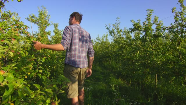 Biodynamic farming – Video