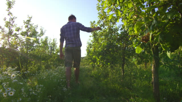 Biodynamic farming video