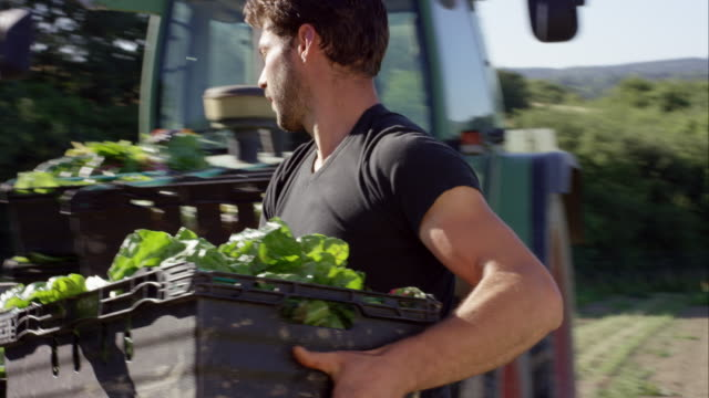 biodynamic 농업 - 유기농 스톡 비디오 및 b-롤 화면