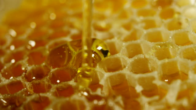 vídeos de stock e filmes b-roll de biological and genuine honey drips inside a jar. i honeycomb dripping honey. - honeycomb
