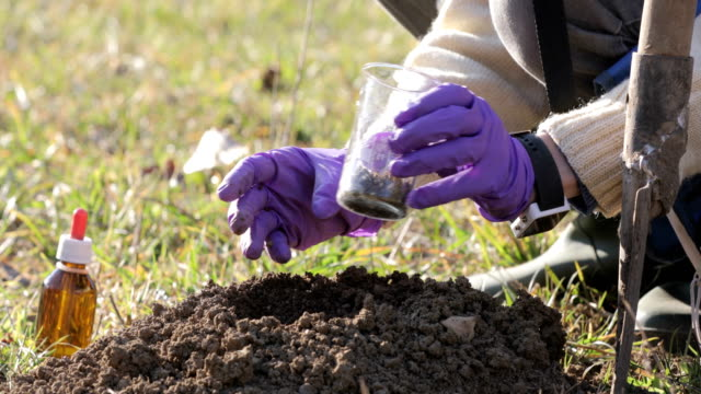 Biologist Researching Dirt on a Meadow video