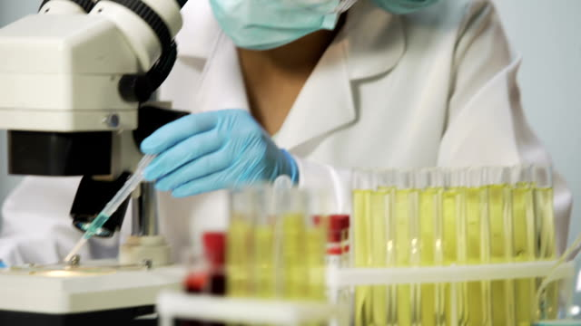Biologist working in laboratory, scientist viewing bacteria sample on microscope video