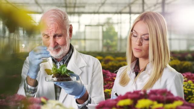 Biyologlar iş başında video