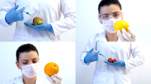 4K Biology scientist injecting chemical liquid by syringe in fruits and vegetables, Collage.