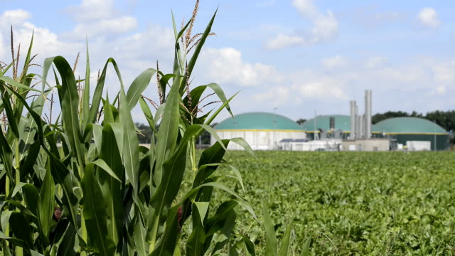 Biomass energy plant behind a cornfield Energiewende Biogas video