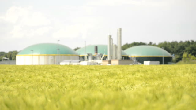 Biomass energy plant behind a wheat field Energiewende Biogas video