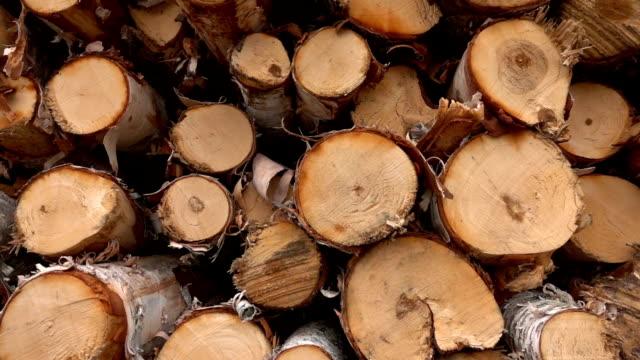 yakin: huş ağacı ahşap günlükleri kesme ve kereste üzerinde büyük woodpile başlayıp büyüğe - şömine odunu stok videoları ve detay görüntü çekimi