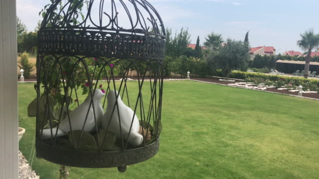 Decoração da gaiola de pássaro no jardim - vídeo