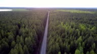 istock bird eye view long straight road crosses pine forest 1177399963