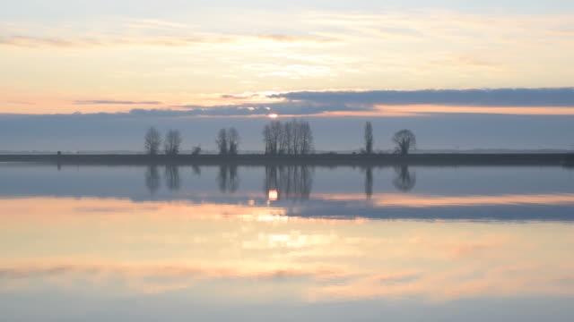 fågel flyger över vatten genom ram under sunrise - pink sunrise bildbanksvideor och videomaterial från bakom kulisserna