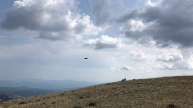 bird flying in the mountains - uccello rapace video stock e b–roll