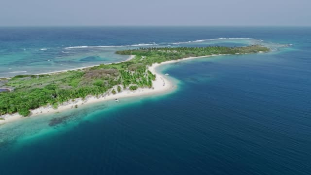 Bird's eye view of tropical island beach with coconut trees, sand, waves and turquoise waters