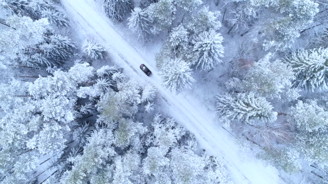 Bird's eye view of winter forest road with car.