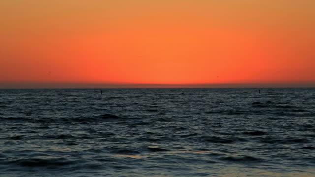 Birds Fly Over Ocean As Sun Sets video