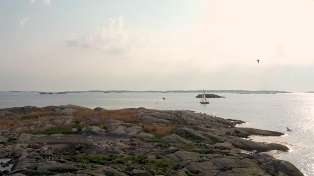vídeos de stock e filmes b-roll de birds flying over a small island - arquipélago