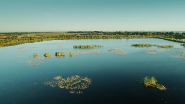 Birds Flying Over Lagoon in Savannas Recreation Area, Florida Aerial shot of basin marsh wetlands in Savannas Preserve State Park in Florida. wetland stock videos & royalty-free footage