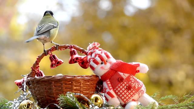 Birds in Christmas video