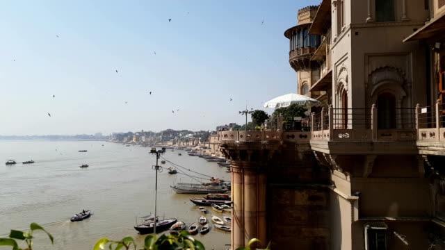 birds in varanasi river - ghat filmów i materiałów b-roll
