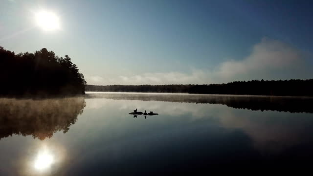 Birds take off in the lake at sunrise - video