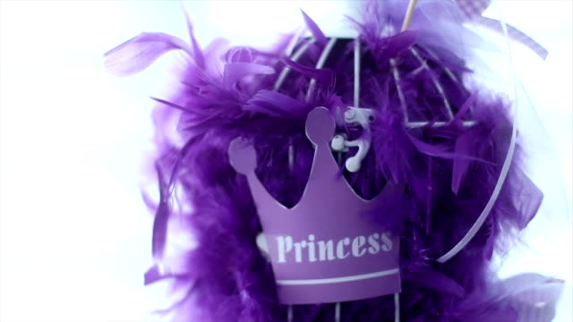 Birthday princess girl Birthday princess girl party princess stock videos & royalty-free footage