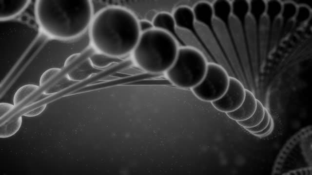 Black and White DNA String video