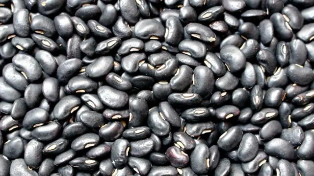 black beans background, rotation shot video