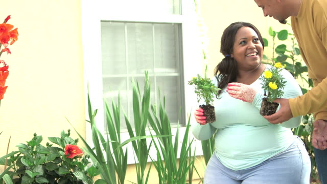 Black couple planting flowers in garden video