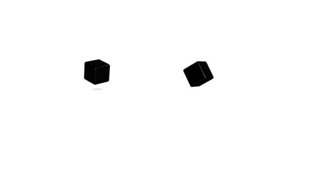 black  dice video