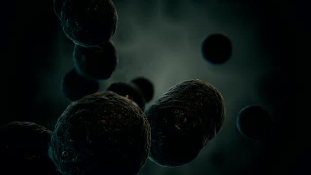 Black dividing virus video